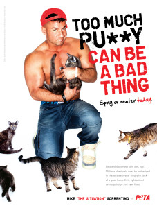 Mike from Jersey Shore shown surrounded by cats, holding a cat, no shirt, very muscular, kneeling, smirking at camera