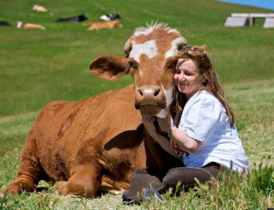 Woman hugging cow