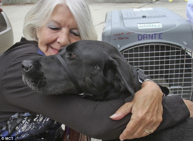 Older woman hugging black lab