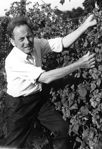 Black and white image of Donald Watson tending to some beanstalks in a garden.
