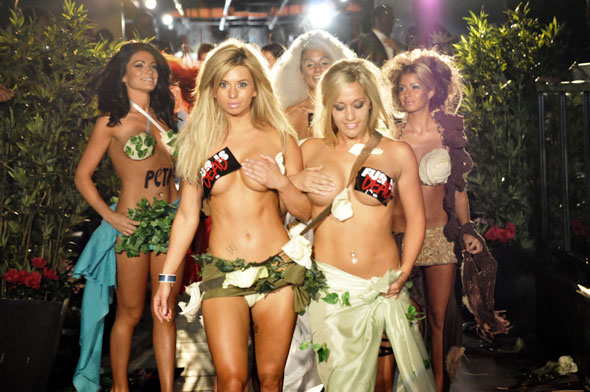 Group of scantily clad, sexualized women barely covered with vegetable underwear, their breasts covered with PETA stickers