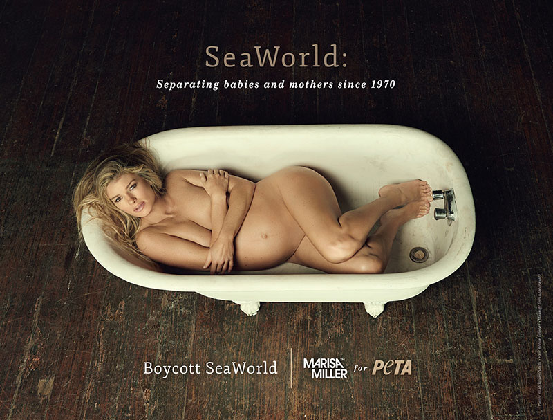 Anti-Seaworld ad by PETA featuring Marisa Miller, a young white woman, nude and pregnant in a bathtub covering her breasts with her arms and looking at the camera from below