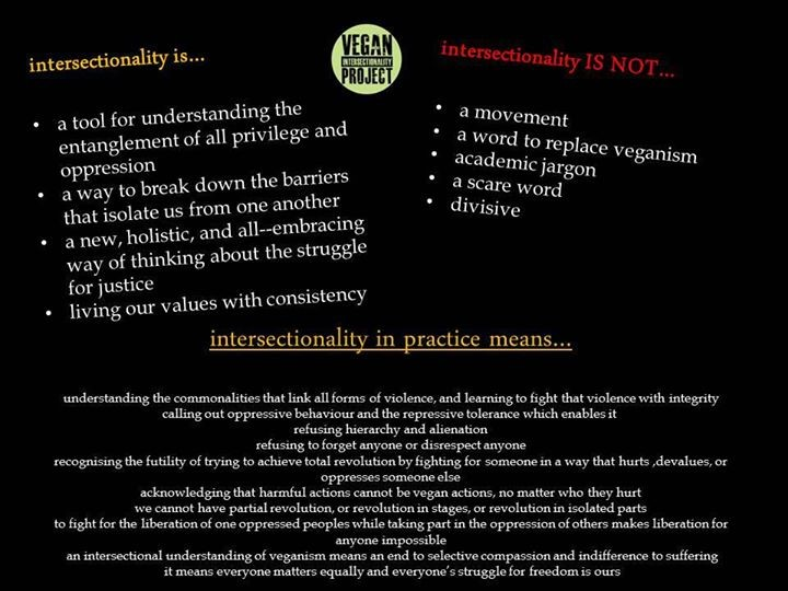 Vegan Information Project poster about intersectionality