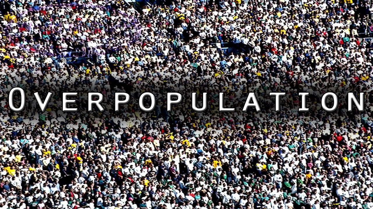 essay on overpopulation in the world