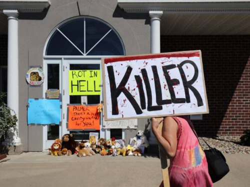 "Picketing outside the home of Cecil's killer. One sign reads, ""KILLER"""