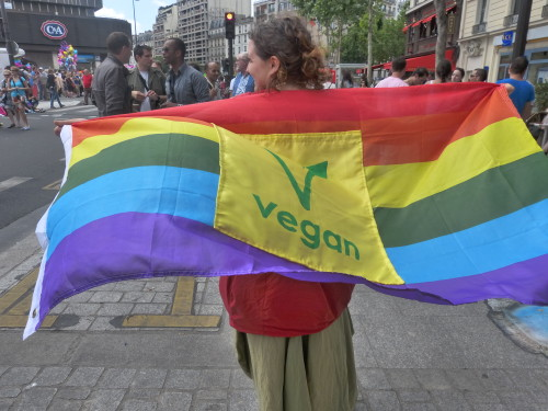 Woman brandishing a large rainbow flag with a vegan symbol in the middle; appears to be at a gay pride festival