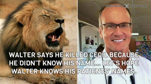 """Walter [the hunter who is also a dentist] says he killed Cecil [the lion] because he didn't know his name… Let's hope Walter knows his patients' names."""