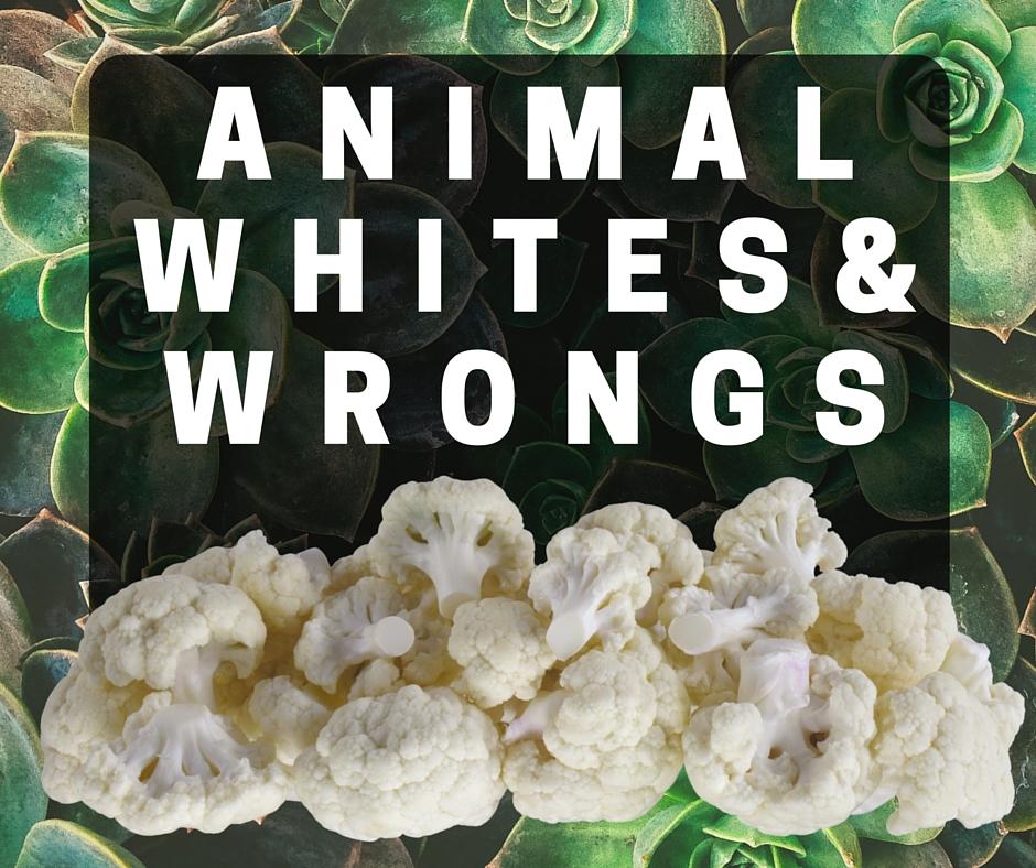 animal whites